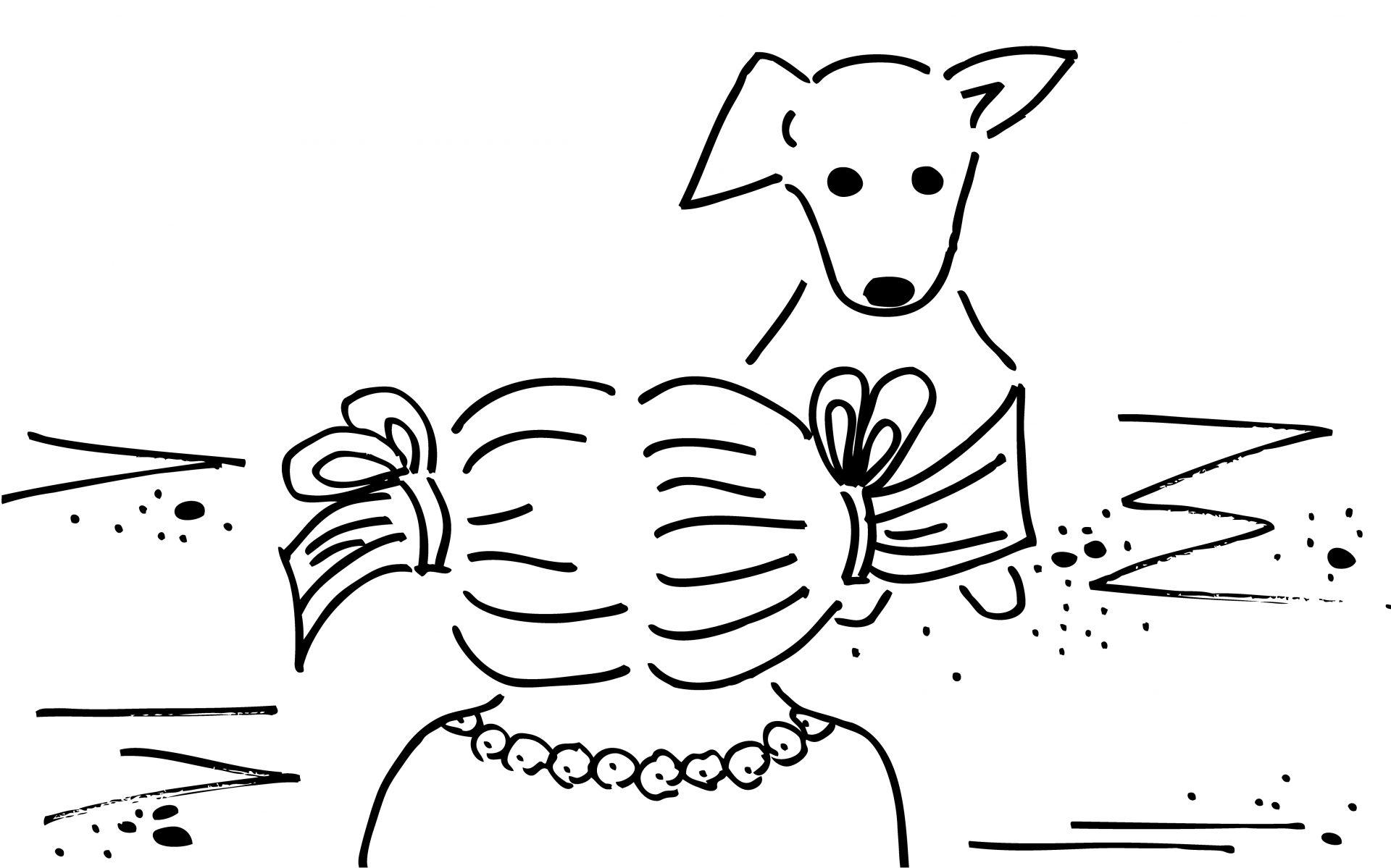 gallery_dog1